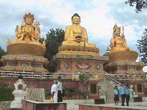 Pilgrimage Tours of Buddha