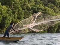 Fisherman Throws His