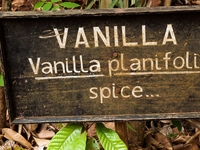 Vanilla Sign At Zanzibar Plantation
