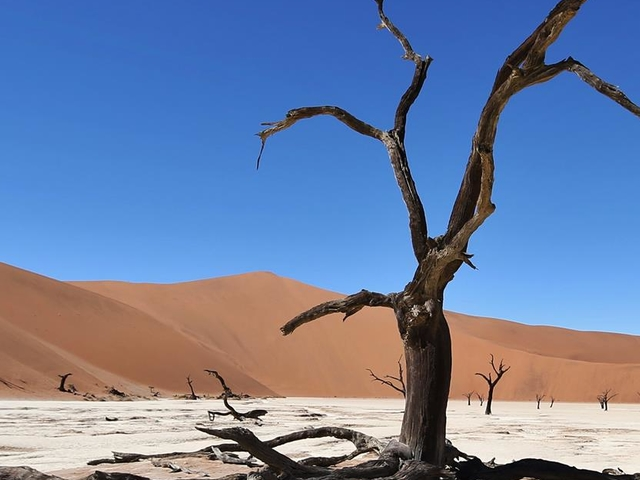 3 Days Sossusvlei Tour Photos