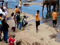 Sri Lanka Classic Tour