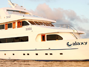 Galaxy Cruise (Galapagos Islands) Photos