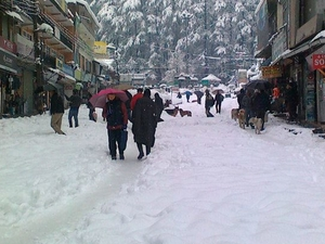 Majestic Shimla Manali Packages Photos