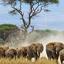28 Best Wildlife Photography