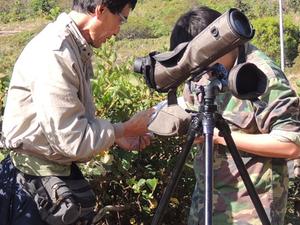 Bird Watching Tour in Kerala Photos