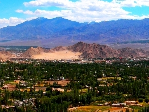 Holiday in Ladakh Photos