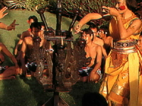 Bali Travel & Tour
