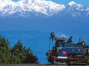 Rejoice In Darjeeling Photos