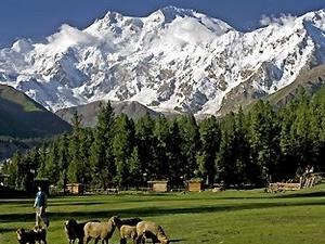 Nanga Parbat Mazeno Pass Trek Photos