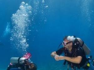 Cham Island Scuba Diving 4 Days Tour Photos