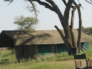 Serengeti Heritage Luxury Tented Camps Photos