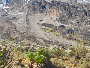 6 Days Mount Kilimanjaro Rongai Root Photos