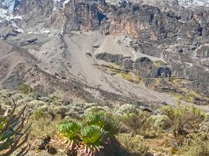 6 Days Mount Kilimanjaro Rongai Root Fotos