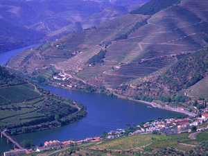 Cruise Tour on Douro River