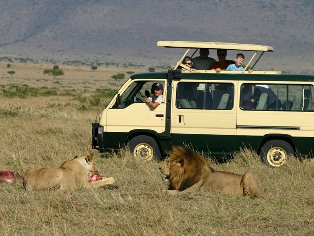 Mt Kenya, Samburu, Nakuru, Masai Mara Tour Photos
