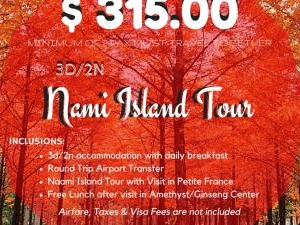 Nami Island Tour Photos