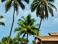 Magical Kerala