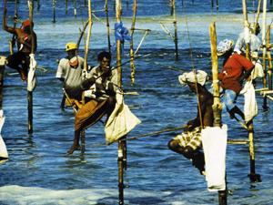 Beach Holiday Package Offer Sri Lanka Photos