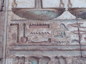 Karnak and Luxor Temples by Coach or Horse Carriage Photos