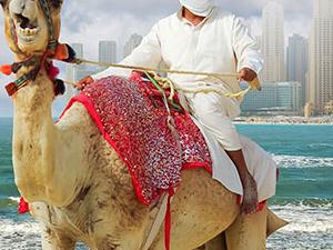 Celebrate the New Year in Dubai Photos