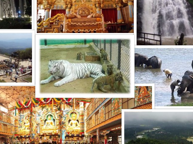 Bangalore, Mysore, Wayanad Tour Photos