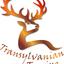 Transylvaniantouring