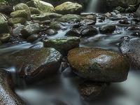 Bukit Lawang and Tangkahan (SPECIAL ACTIVITIES)