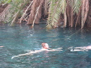 Swimming to Kikuletwa Hot Spring with Hot Local Lunch Photos