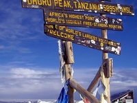 Kilimanjaro the Second Highest Mountain in World