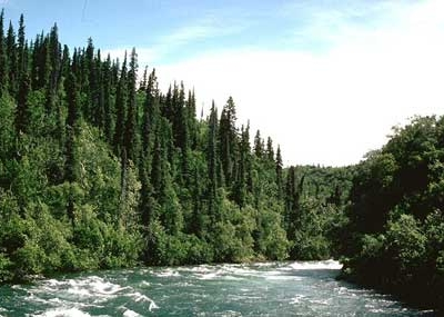 Alagnak River