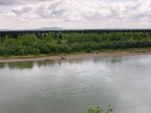 Mulchatna River