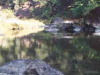 Hayfork Creek