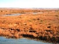 Cimarron River