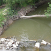 Plaster Creek
