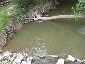 Gesso Creek