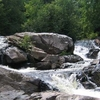 Yellow Dog River