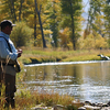 Fly Fishing On Big Hole River