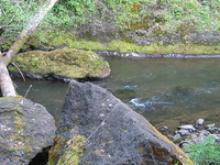 Nestucca River