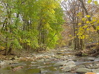 Cobbs Creek
