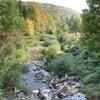 Pleasant Stream