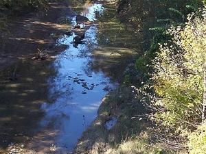 Nonconnah Creek
