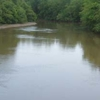 Obion River
