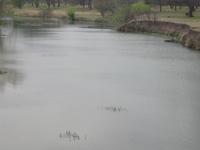 San Saba River