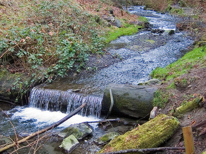 Boeing Creek