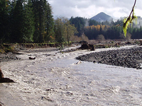 Nisqually River