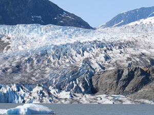 Viator Exclusive: Mendenhall Glacier, Whale-Watching Cruise and Juneau City Tour Photos