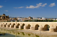 2-Day Cordoba Trip from Seville Including Medina Azahara, Carmona and Skip-the-Line Entrance to Cordoba Mosque-Cathedral Photos