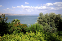 2-Day Northern Israel Tour from Tel Aviv: Golan Heights, Nazareth and the Sea of Galilee Photos