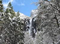 2-Day Yosemite National Park Winter Tour from San Francisco Photos