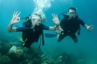 2-Tank Scuba Diving Tour from Providenciales Photos
